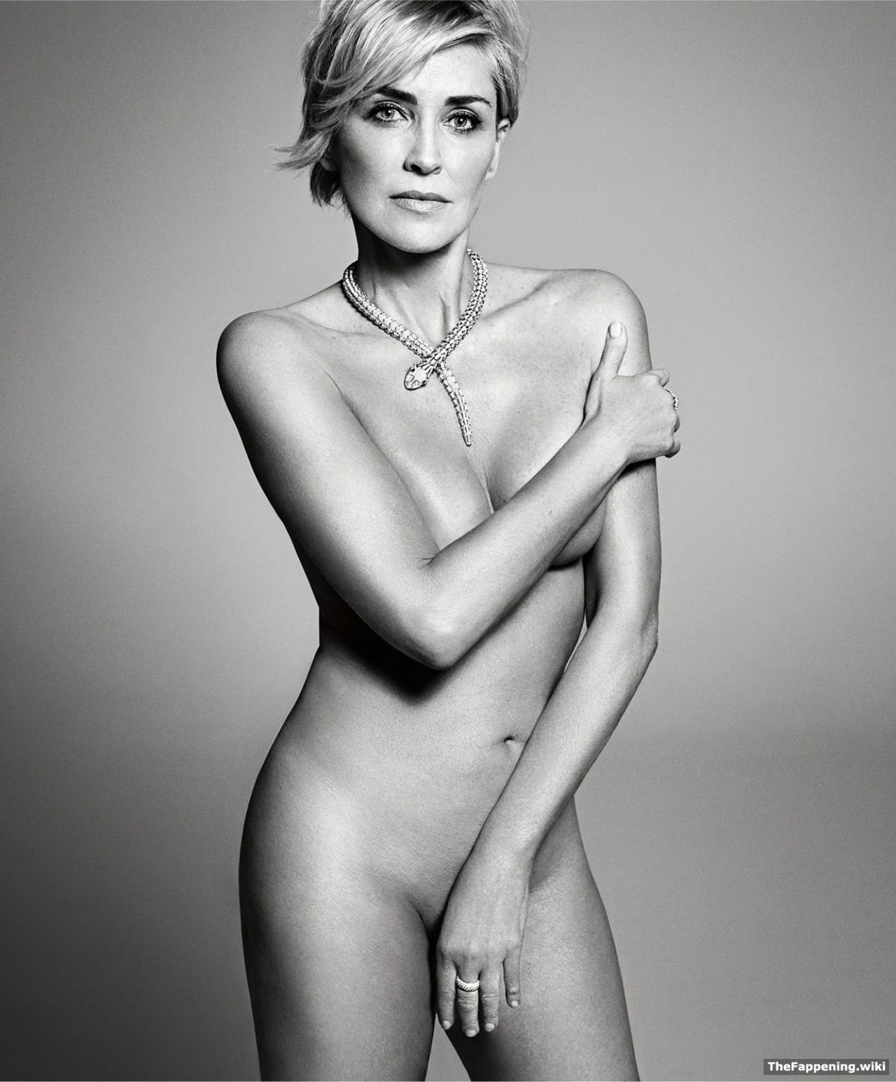 Sharon stone pussy nude